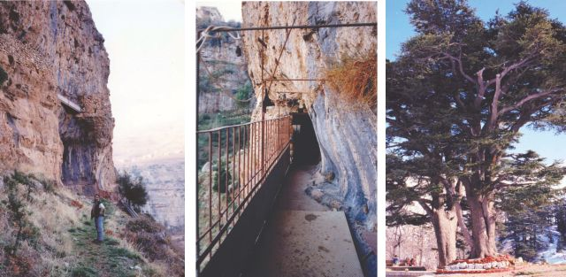 L-R: Tony, below the secret church with its brickwork on the cliff.  A passage in the cliffside church that Tony showed me. The cedars are Lebanon and the heritage of half the world.