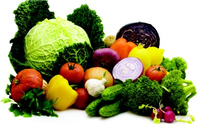 Diet for cancer patients: choosing the best option | The