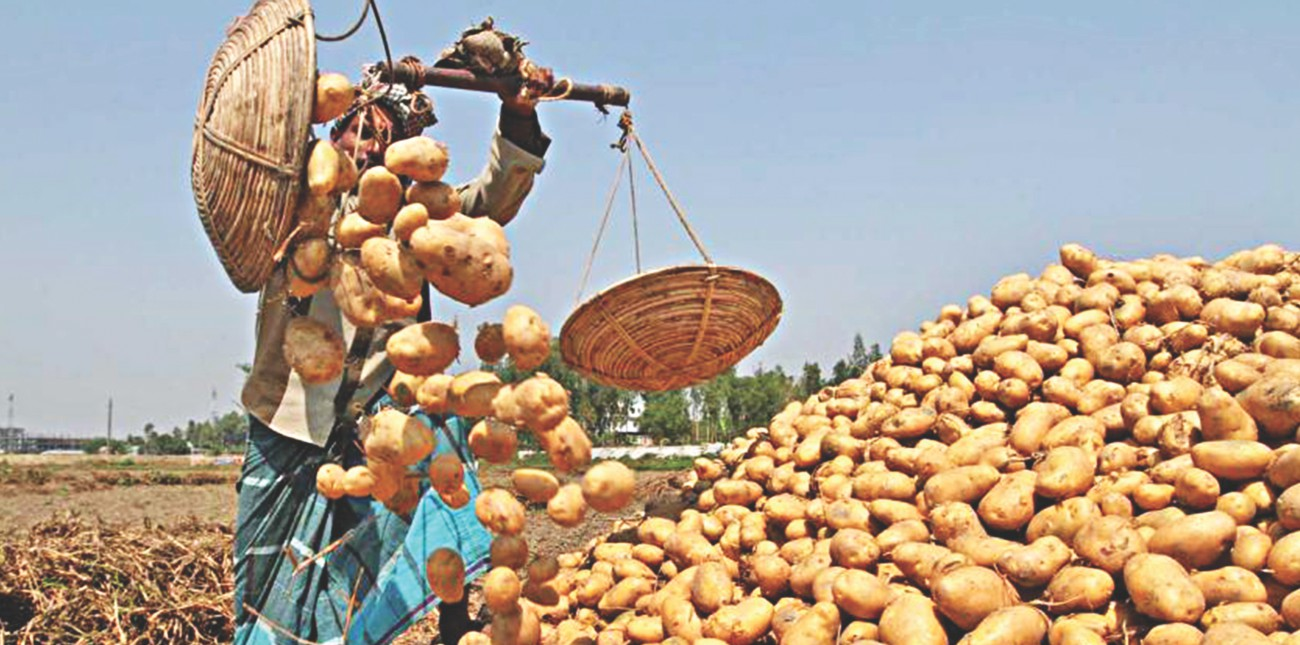 food security prospects the daily star