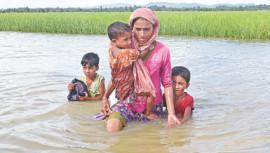 Rohingya influx again