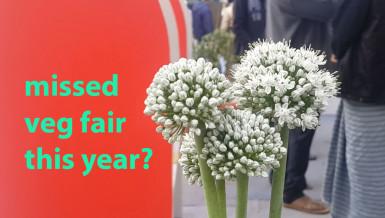 National Vegetable Fair 2018