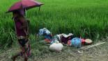 IPU seeks UNSC intervention on Rohingya crisis