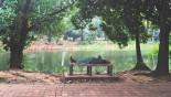 Dhaka's vanishing public spaces