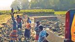 Brick kilns threaten soil fertility