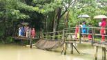 Bridge collapse snaps Amtoli road link