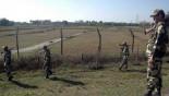 BSF kills 2 Bangladeshi nationals