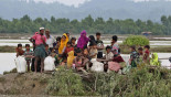 12 Rohingyas found in Sunamganj, sent to Cox's Bazar
