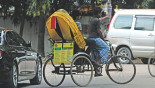 Gulshan to get new rickshaw, bus services
