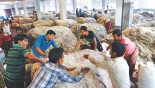Flow of hides to Savar yet to gain pace