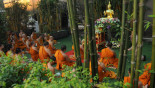 The magic of Makha Bucha