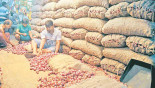India increases onion export price by $275