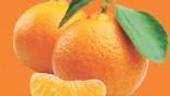 Advantages of eating oranges