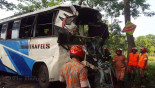 7 killed in Pabna bus collision