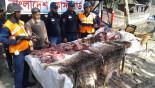 120kgs of venison seized in Barguna