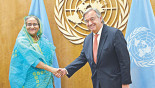 PM urges quick, effective UN steps