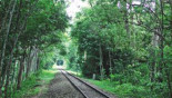 Sylhet rail link with Dhaka, Ctg restored