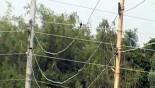 Naked, unsafe power lines pose danger