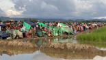 UNSC urged to solve Rohingya crisis
