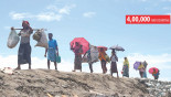 Endless influx: 1m by year end, predicts IOM