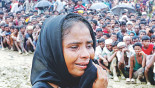 Rohingya Crisis: Bangladesh wants strong UNSC stance