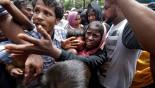 WFP seeks 75 million dollars for Rohingya crisis