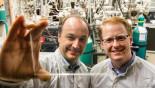 See-through solar cells