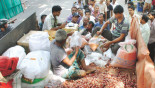 TCB to sell onion at Tk 50 per kg from tomorrow