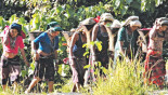 Hunger stalks life in remote Thanchi
