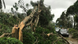 Typhoon Hato: Death toll rises to 16