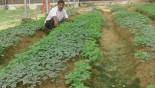 Lalmonirhat farmer takes expertise to Nepal