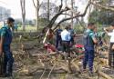 Man dies as tree falls on bike in Dhaka
