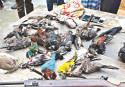 Three jailed for hunting wild birds