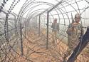 Felani, the BSF and the elusive zero target