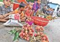 Pesticide killed the 13 Dinajpur kids