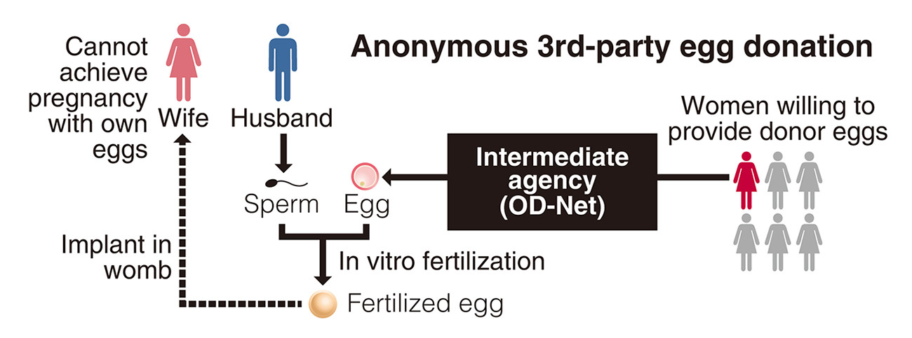 Japan birth resulting from an anonymous third-party egg
