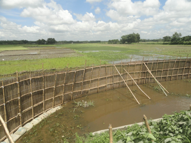 This bamboo fence, illegally erected by local BNP men in Dulai Beel (water body) for fish farming in June this year at Falimari village in Aditmari upazila of Lalmonirhat, was removed yesterday morning following a court order. Photo: Star