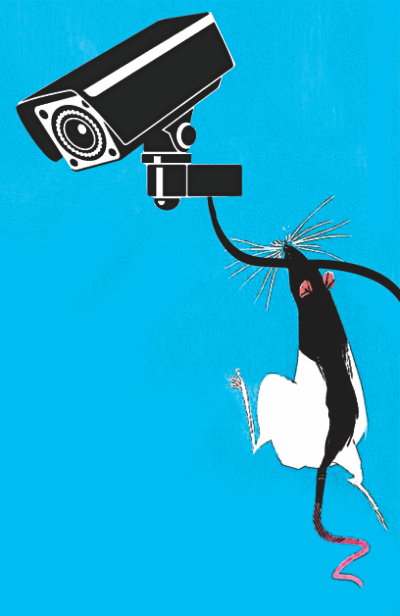 PDB blames rats for CCTV outage in DMCH