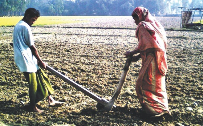 Sabuj Mia pulls while his wife Lalbhanu Begum holds the plough on the 10 decimals of land lent to them by an NGO. Even with no cattle to pull the plough, this ultra poor farmer of monga-prone Gaibandha is happy.  Photo: Star