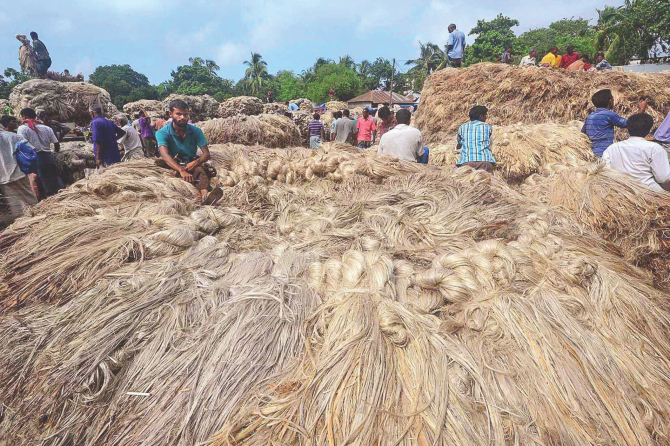Jute farmers gather with their produces at Sariakandi Sadar Haat (weekly market) in Bogra. The district saw a good production of the fibre while the growers were getting fair prices of it this season. PHOTO: STAR