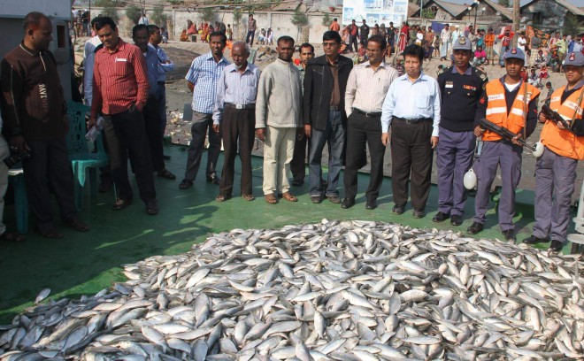 Coastguards and staff of the fisheries department seize huge quantity of jatka (hilsa fry less than 10 inches in length) from two trawlers on the Kirtonkhola River in Barisal early yesterday. Photo: Star