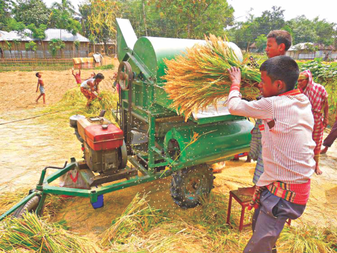 Farmers are busy threshing paddy using harvester machine in Nilphamari Sadar upazila. Eighty percent farmers of the district are now using the machine.  PHOTO: STAR
