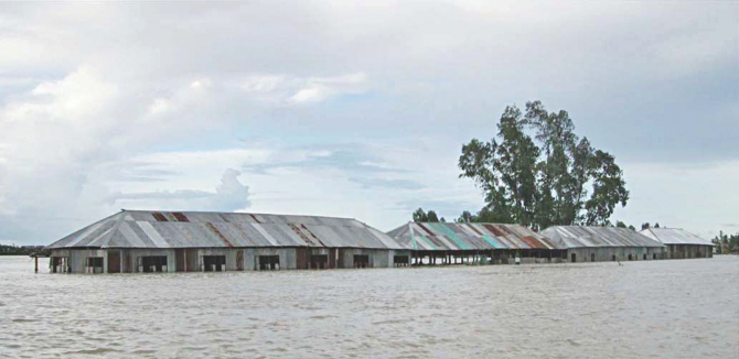 Only the top halves of the buildings of Nowkhila PN High School in Shariakandi upazila of Bogra are above the flood-water. The pictures were taken yesterday.  Photo: Star