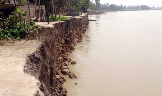 The turbulent Jamuna has devoured a number of houses and vast tracts of croplands in Phulchhari and Saghata upazilas of Gailbandha district in the last three days. The photo was taken from Dighalkandi in Haldia union of Saghata upazila yesterday.  PHOTO: STAR