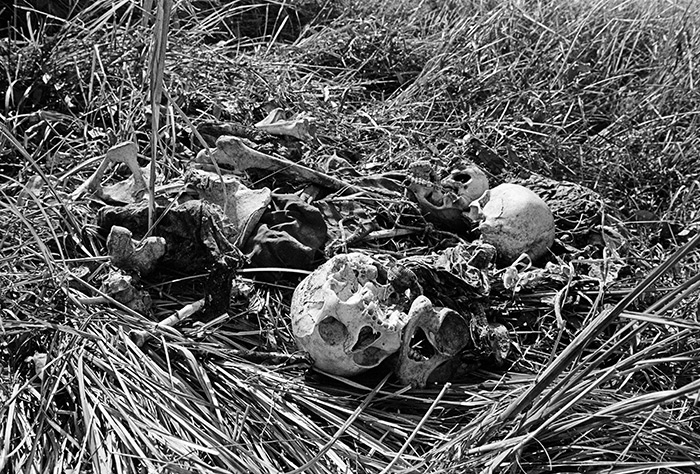 Skeletons of atrocity victims found after the liberation, in a field near Dhaka. There were pits full and scattered bodies all over Shialbari area in Mirpur, around the ruins of burned out villages. Photo: Magnum Photos