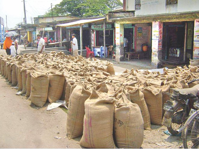 Sacks of wheat bought from farmers by influential traders are kept at Tebunia Haat in Pabna district before supply to the government godowns. The official rate for procuring wheat this season eludes the farmers as traders and middlemen virtually prevent the growers from selling the crop directly to the godowns.   PHOTO: STAR