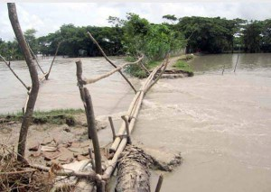 Tidal surges in Patuakhali badly damage road links