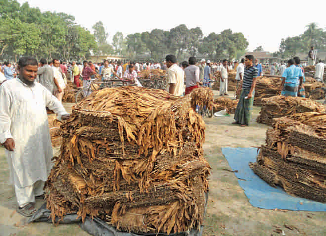 Farmers never have problems selling tobacco.