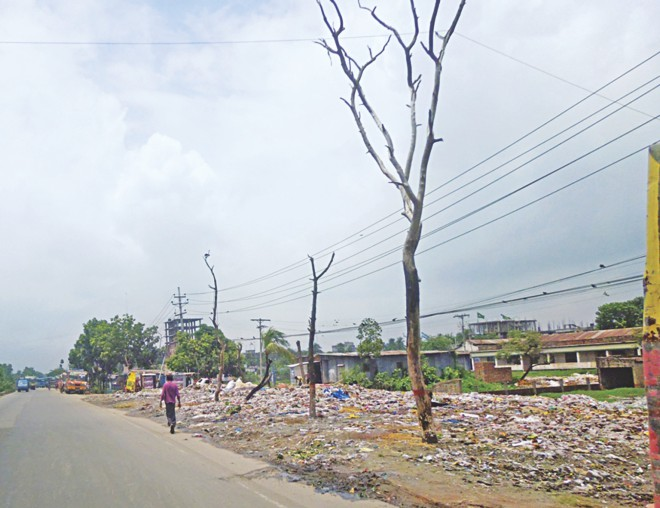Garbage dumping killing trees