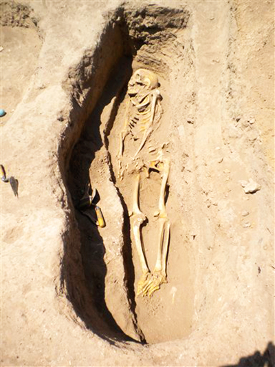In this image made available from Oriental Institute of the University of Chicago, on Thursday June 19, 2014 shows a skeleton in a grave in northern Syria in 2010. Photo: AP