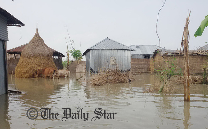 This photo taken on August 22, 2014 shows partial view of the flood affected Chirakhawa Char of Jatrapur union under Kurigram Sadar upazila. Photo: STAR